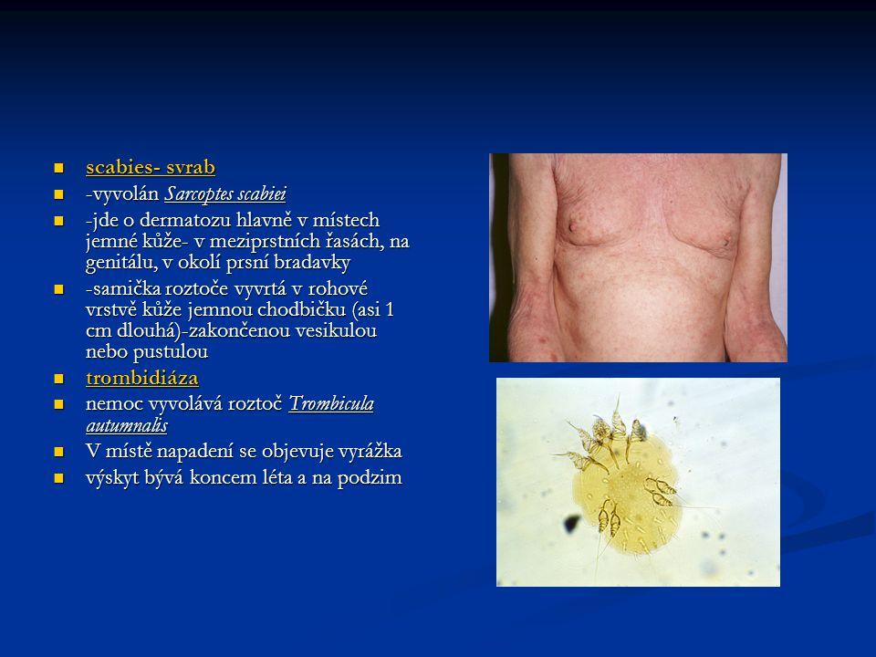 scabies- svrab -vyvolán Sarcoptes scabiei. -jde o dermatozu hlavně v místech jemné kůže- v meziprstních řasách, na genitálu, v okolí prsní bradavky.