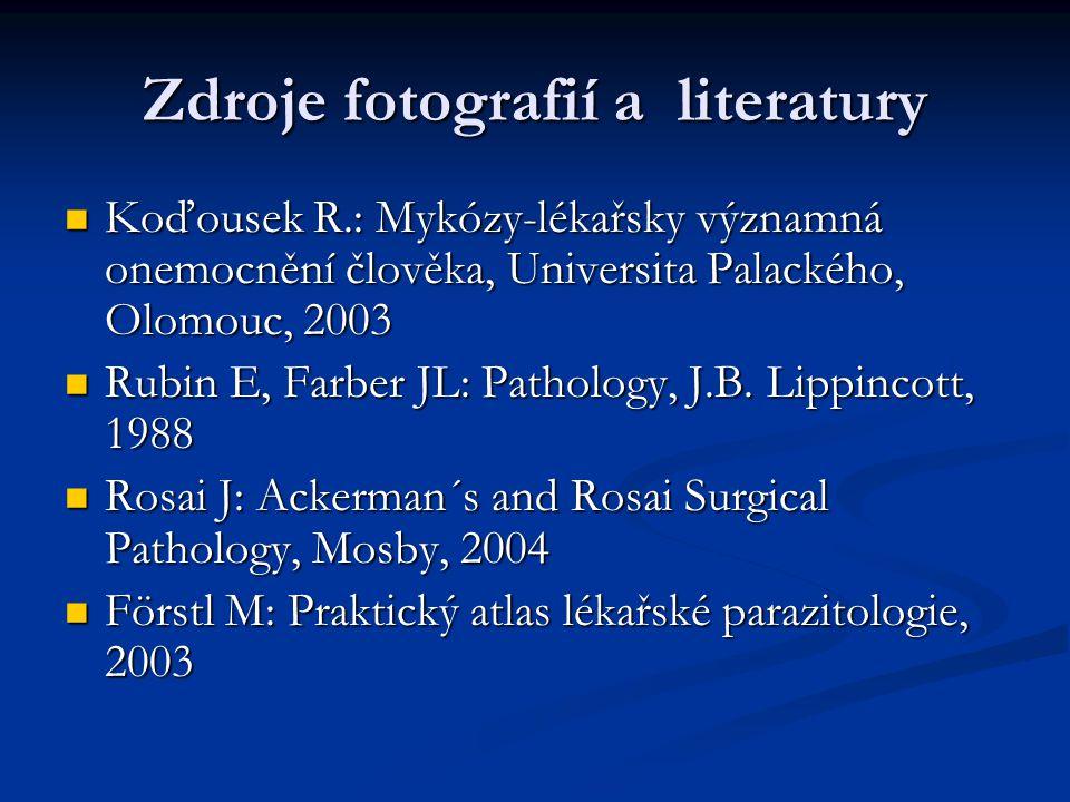 Zdroje fotografií a literatury