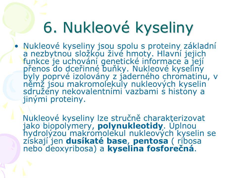 6. Nukleové kyseliny