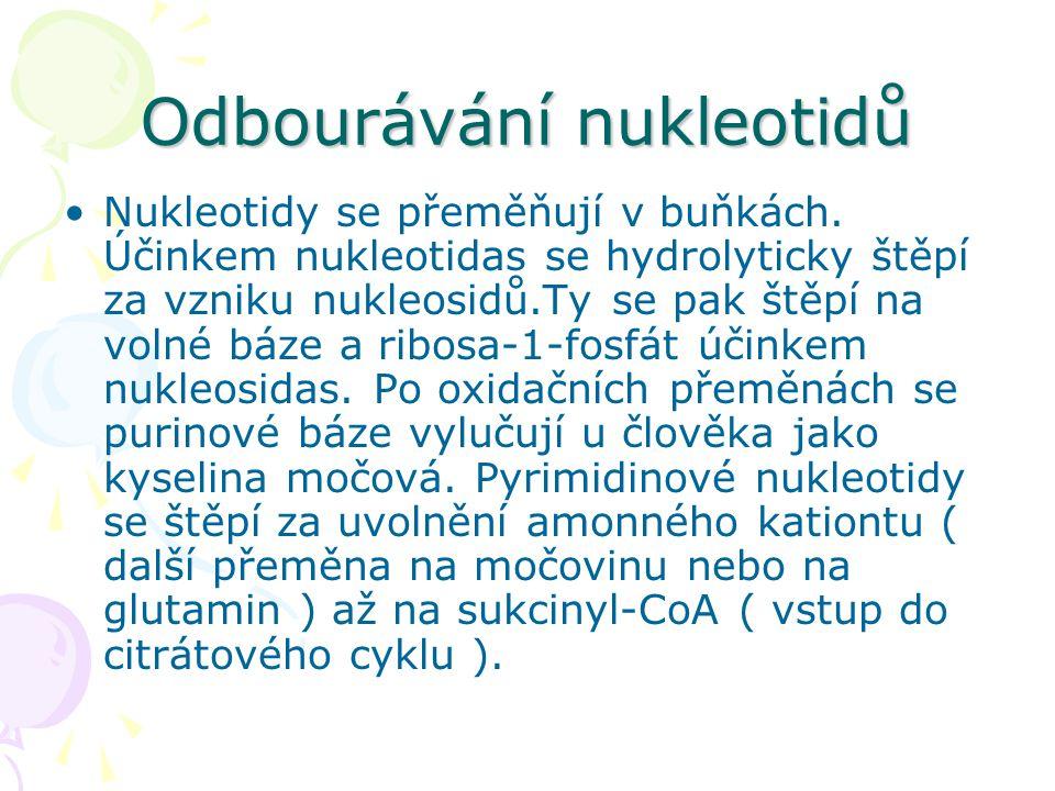 Odbourávání nukleotidů