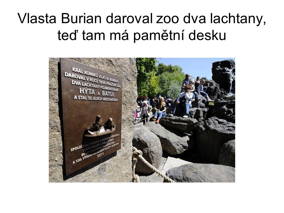 Vlasta Burian daroval zoo dva lachtany, teď tam má pamětní desku
