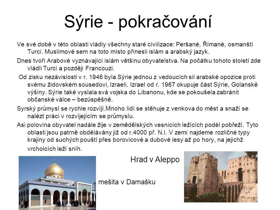Sýrie - pokračování Hrad v Aleppo mešita v Damašku