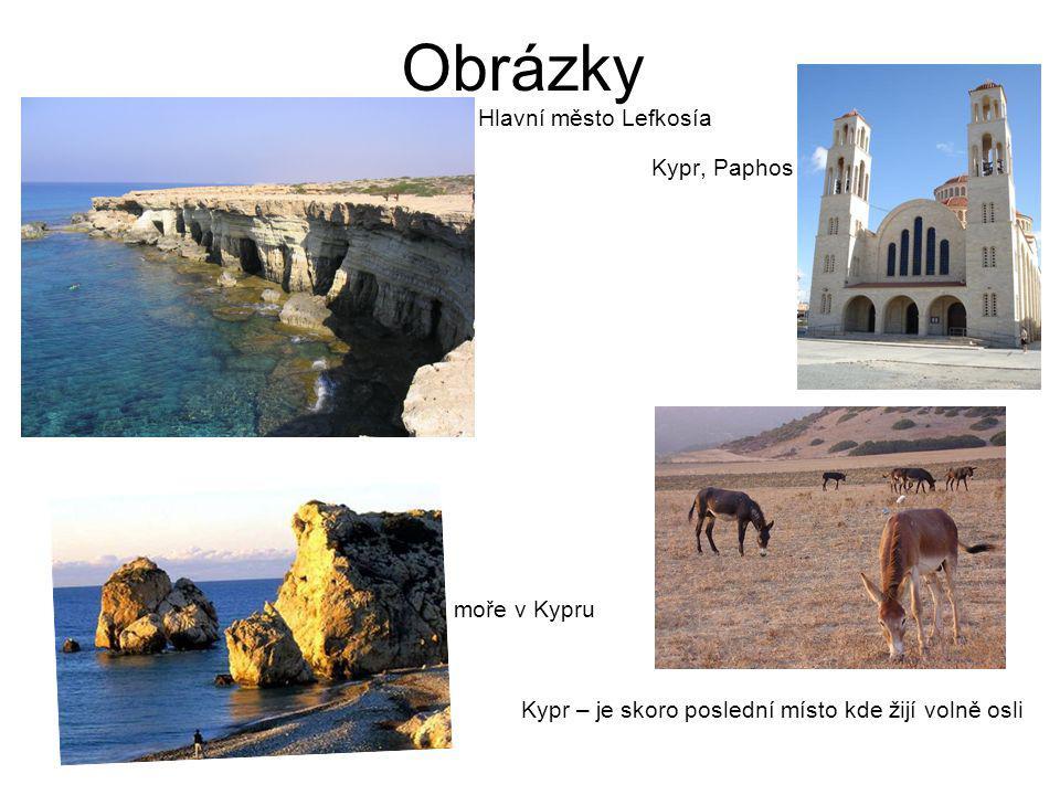 Obrázky Kypr – je skoro poslední místo kde žijí volně osli
