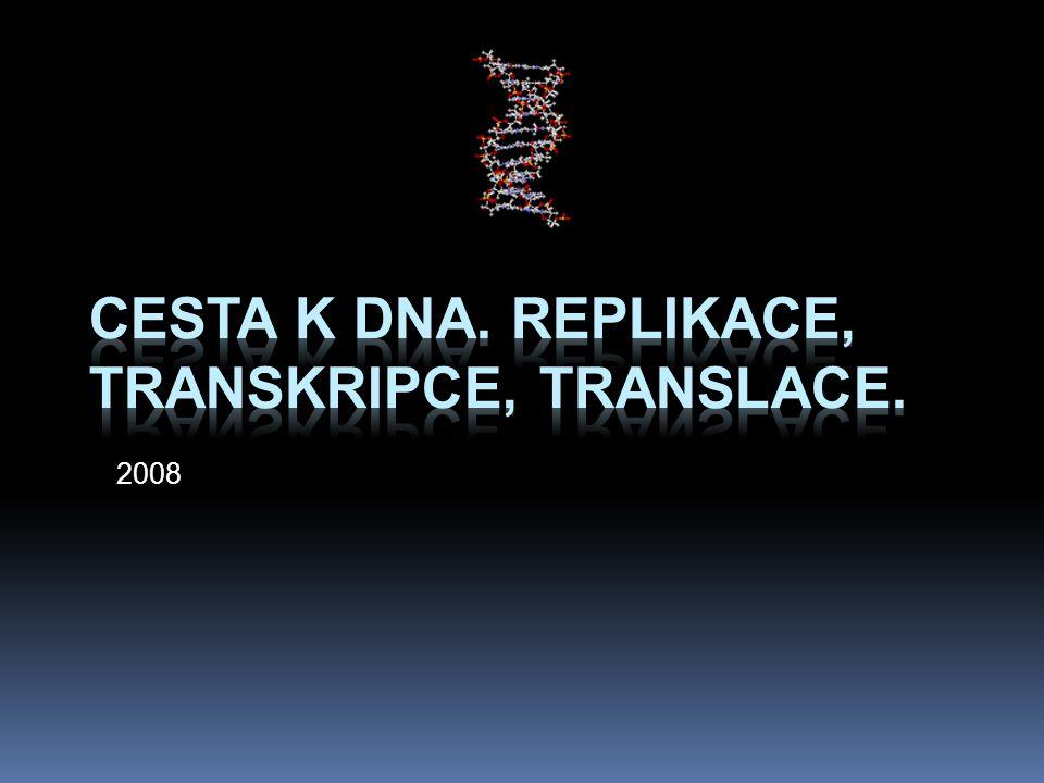 Cesta k DNA. Replikace, transkripce, translace.