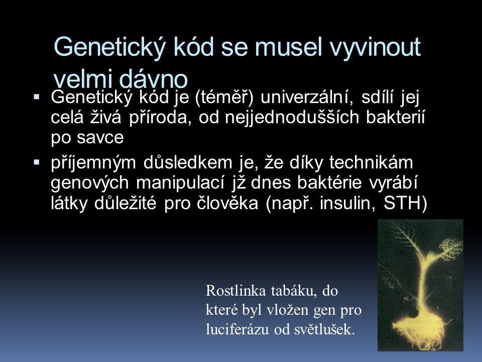 Genetický kód se musel vyvinout velmi dávno