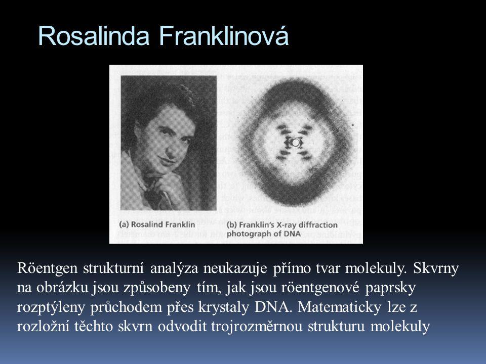 Rosalinda Franklinová