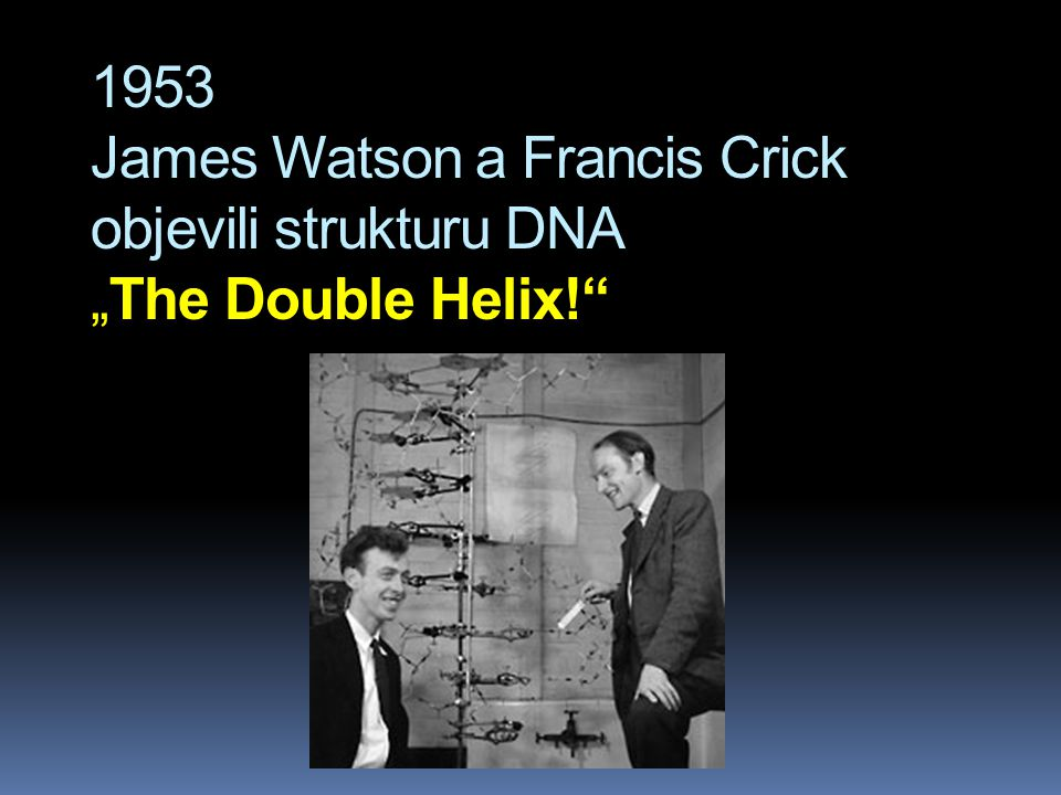 "1953 James Watson a Francis Crick objevili strukturu DNA ""The Double Helix!"