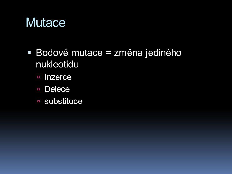 Mutace Bodové mutace = změna jediného nukleotidu Inzerce Delece