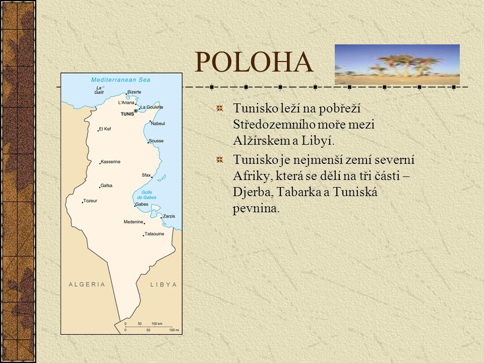 POLOHA Tunisko leží na pobřeží Středozemního moře mezi Alžírskem a Libyí.