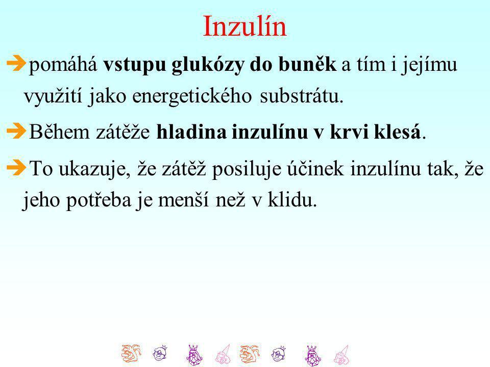 Inzulín pomáhá vstupu glukózy do buněk a tím i jejímu využití jako energetického substrátu. Během zátěže hladina inzulínu v krvi klesá.