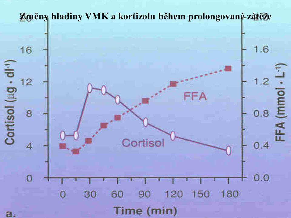 Změny hladiny VMK a kortizolu během prolongované zátěže