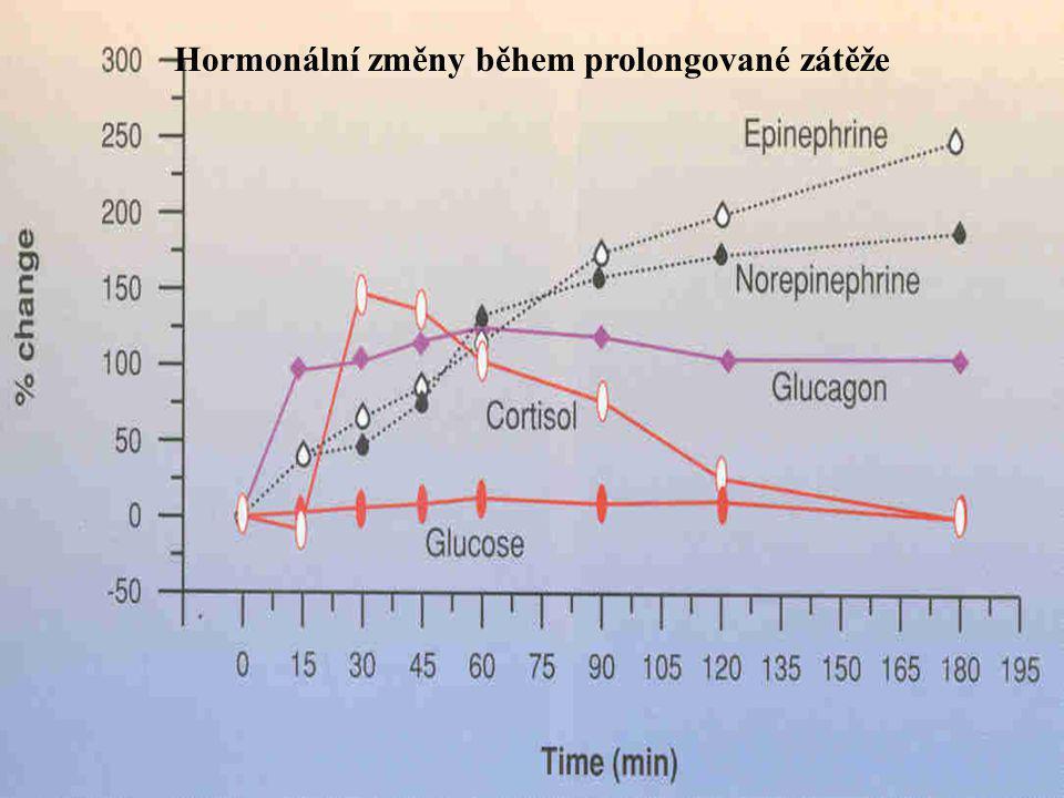 Hormonální změny během prolongované zátěže