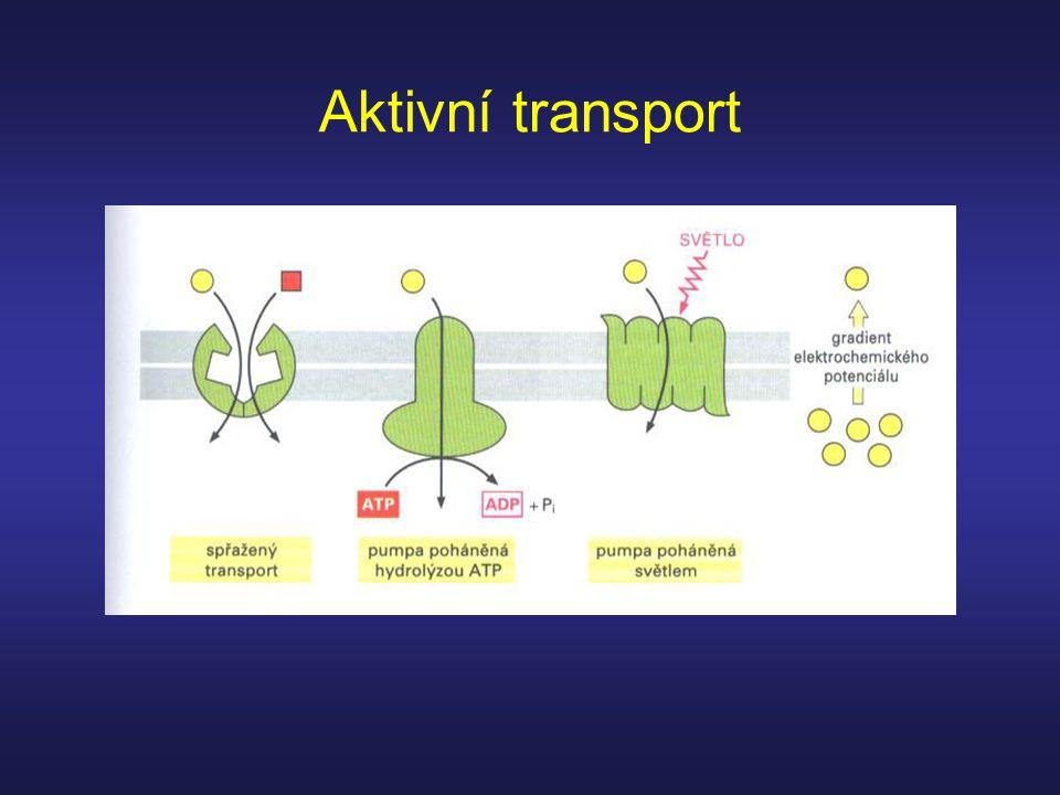 Aktivní transport