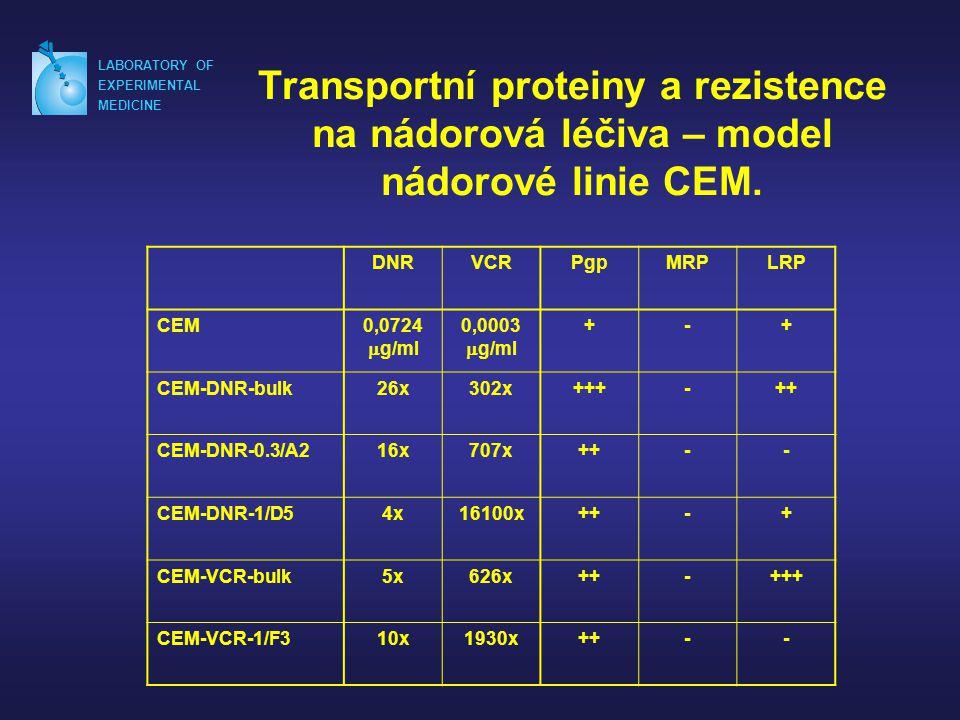 LABORATORY OF EXPERIMENTAL. MEDICINE. Transportní proteiny a rezistence na nádorová léčiva – model nádorové linie CEM.