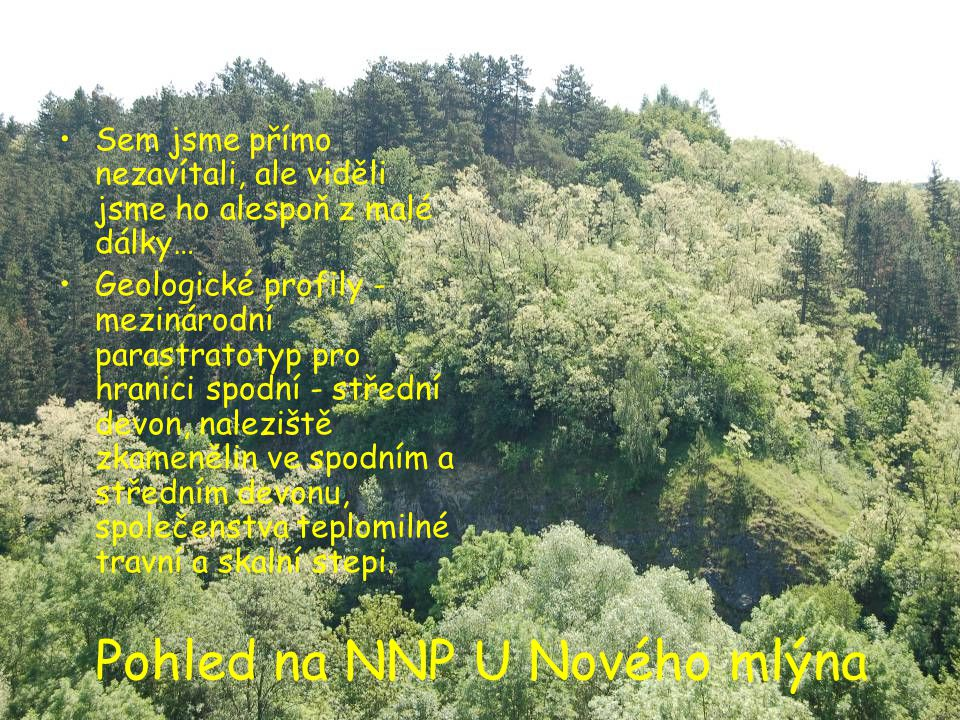 Pohled na NNP U Nového mlýna