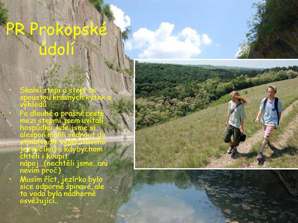 PR Prokopské údolí Skalní stepi a stepi se spoustou krásných kytek a výhledů.