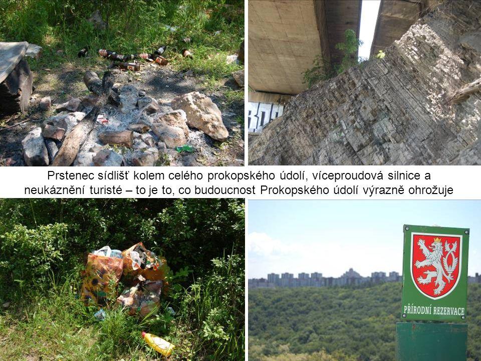 Prstenec sídlišť kolem celého prokopského údolí, víceproudová silnice a neukáznění turisté – to je to, co budoucnost Prokopského údolí výrazně ohrožuje