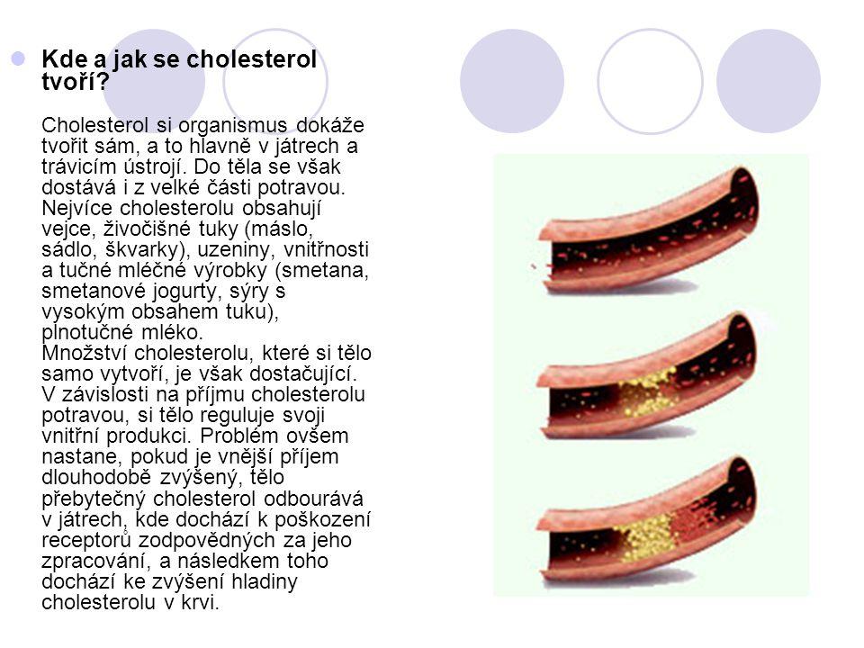 Kde a jak se cholesterol tvoří
