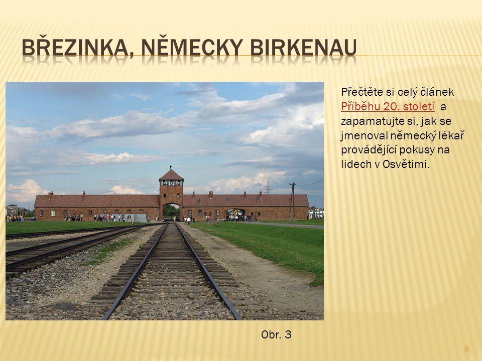 Březinka, německy Birkenau