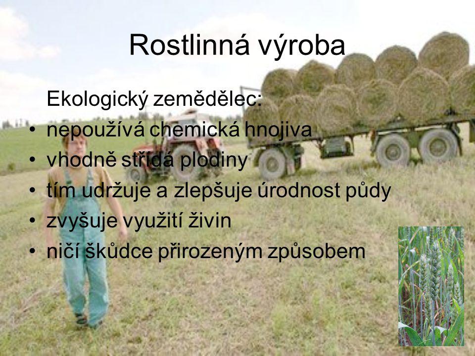 Rostlinná výroba Ekologický zemědělec: nepoužívá chemická hnojiva