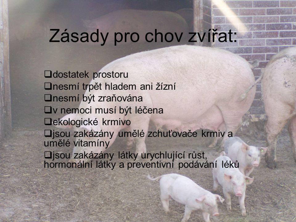 Zásady pro chov zvířat: