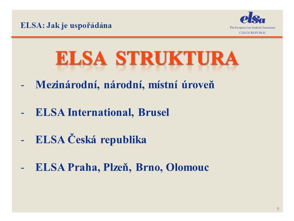 Elsa struktura Mezinárodní, národní, místní úroveň