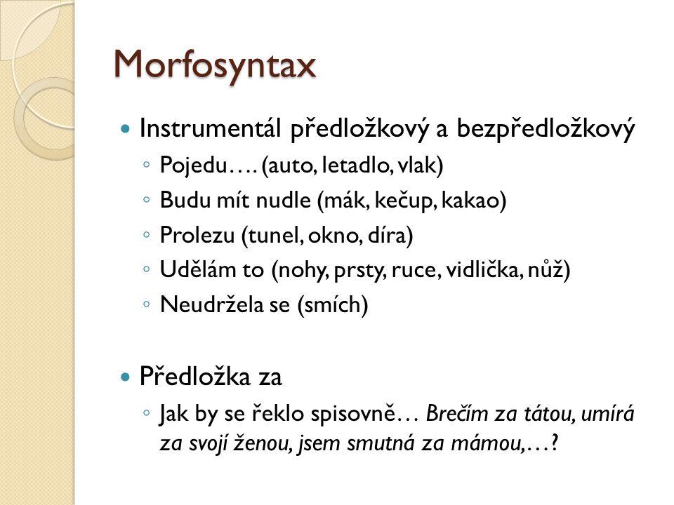 Morfosyntax Instrumentál předložkový a bezpředložkový Předložka za