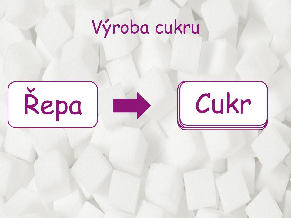 Řepa Síření Praní Cukr Řezání Čeření Odparka Výroba cukru Filtrace