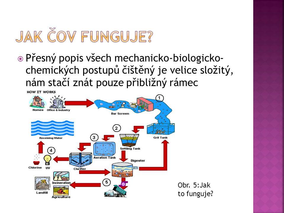 Jak čov funguje Přesný popis všech mechanicko-biologicko- chemických postupů čištěný je velice složitý, nám stačí znát pouze přibližný rámec.