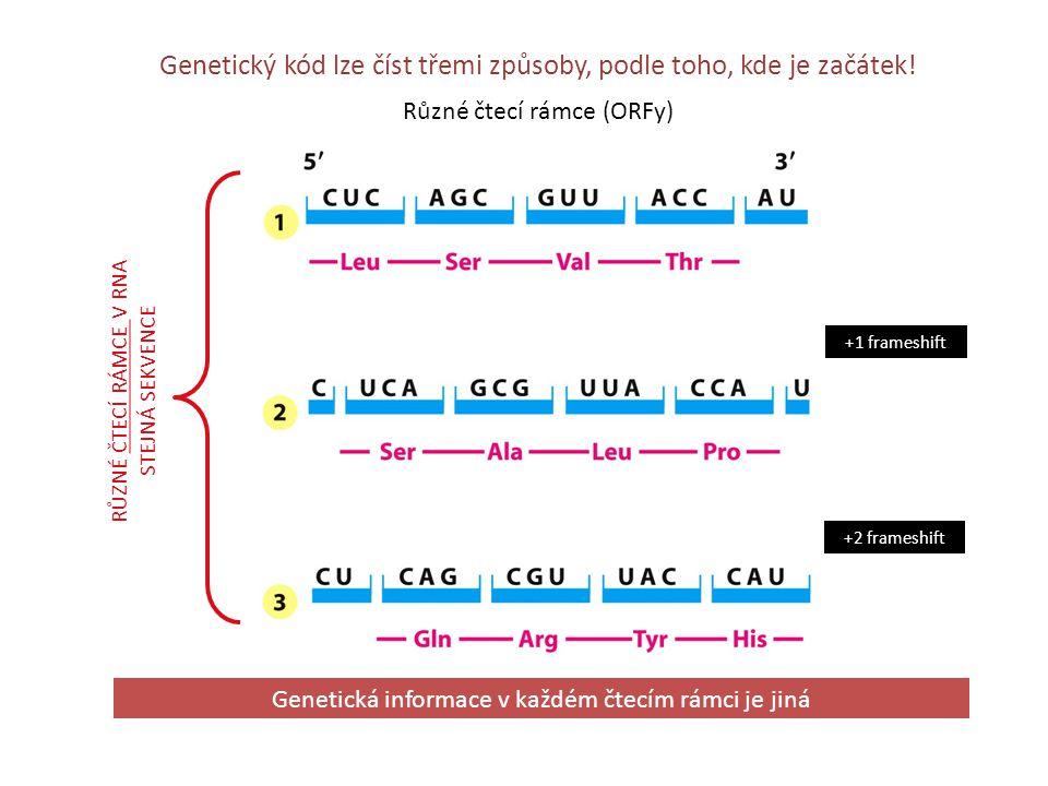 Genetický kód lze číst třemi způsoby, podle toho, kde je začátek!