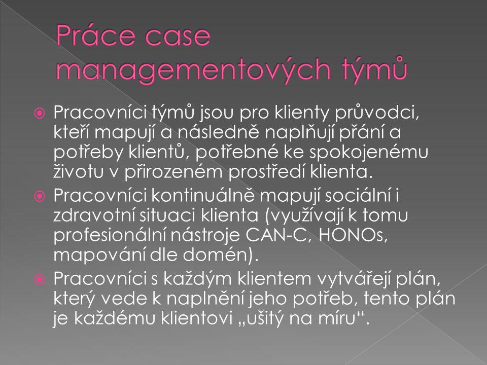 Práce case managementových týmů