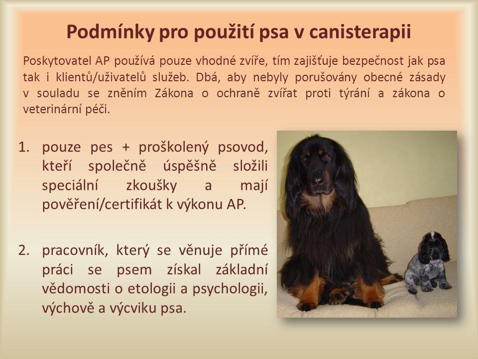 Podmínky pro použití psa v canisterapii