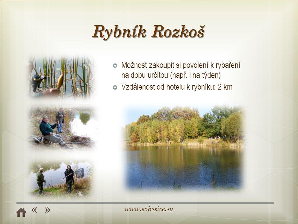 Rybník Rozkoš Možnost zakoupit si povolení k rybaření na dobu určitou (např.