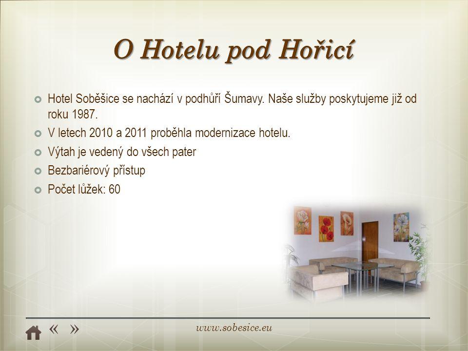 O Hotelu pod Hořicí Hotel Soběšice se nachází v podhůří Šumavy. Naše služby poskytujeme již od roku 1987.