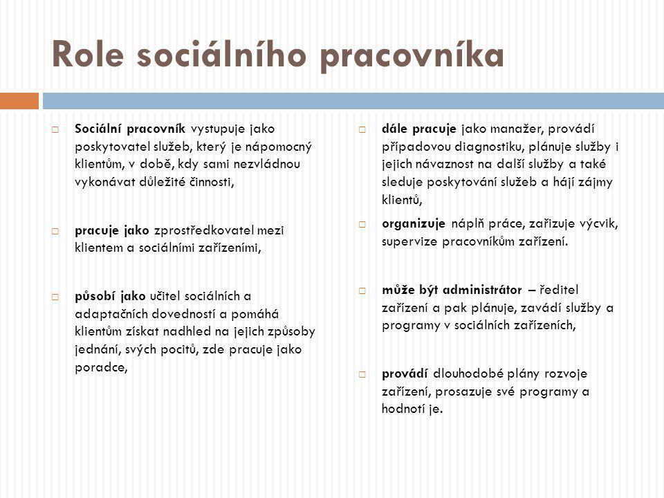 Role sociálního pracovníka