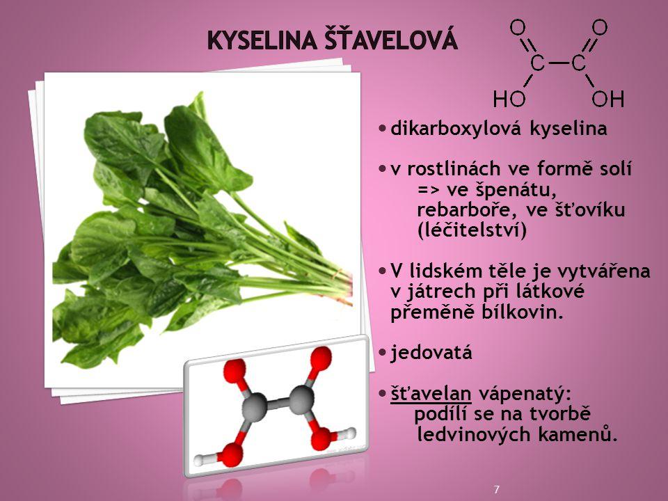 Kyselina šťavelová dikarboxylová kyselina v rostlinách ve formě solí