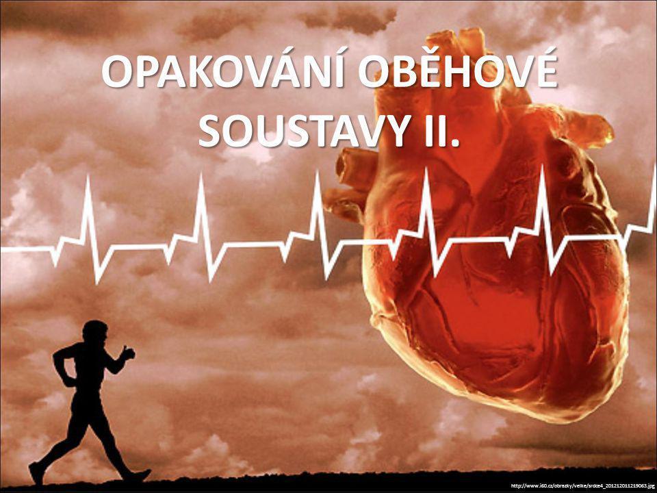 OPAKOVÁNÍ OBĚHOVÉ SOUSTAVY II.