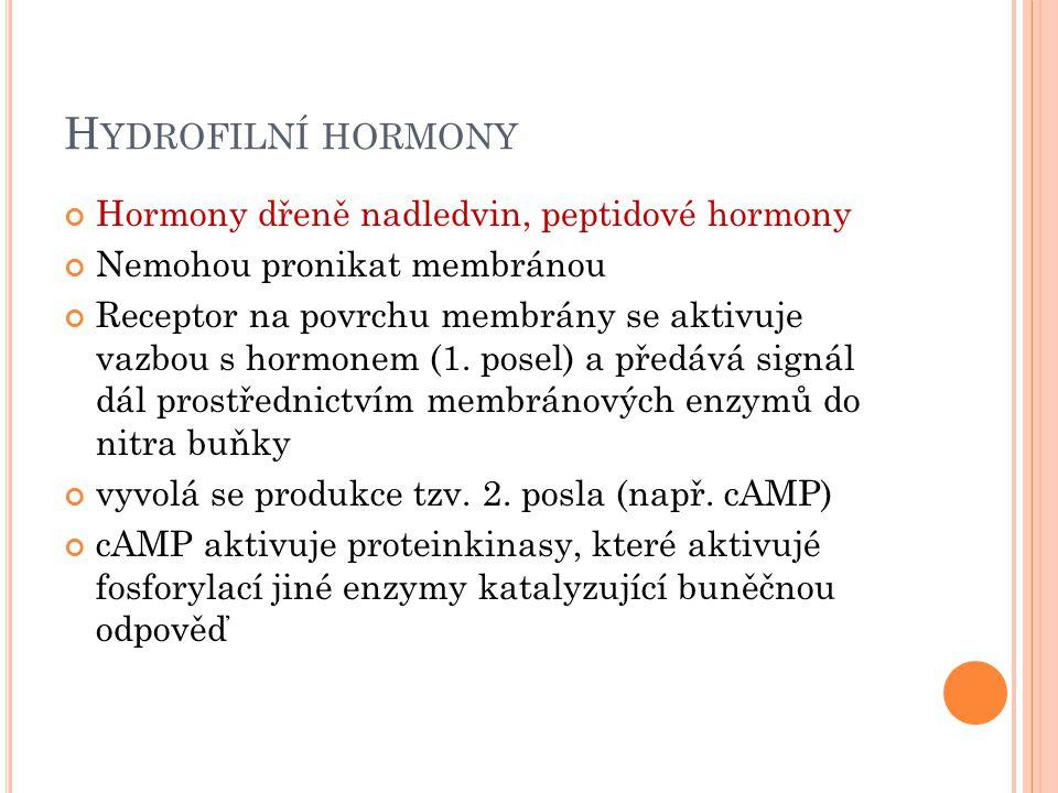 Hydrofilní hormony Hormony dřeně nadledvin, peptidové hormony