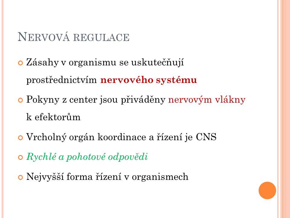 Nervová regulace Zásahy v organismu se uskutečňují prostřednictvím nervového systému. Pokyny z center jsou přiváděny nervovým vlákny k efektorům.