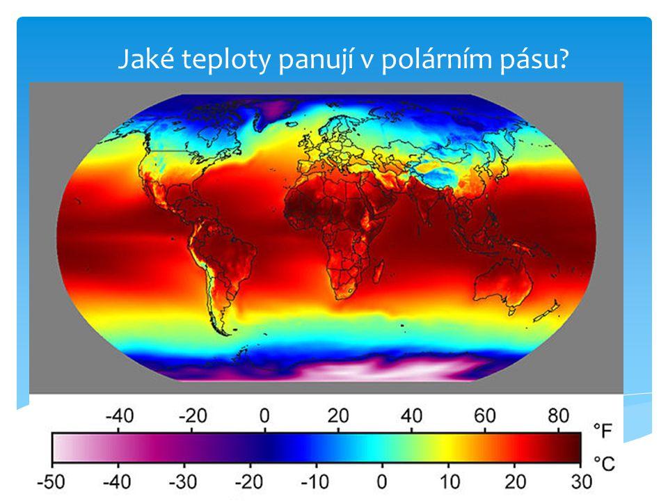 Jaké teploty panují v polárním pásu