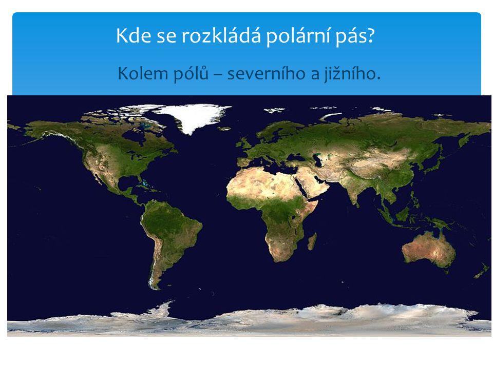 Kolem pólů – severního a jižního.