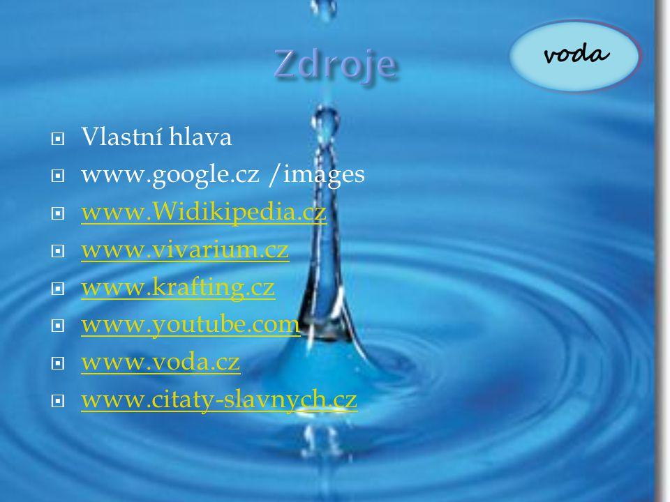 Zdroje Vlastní hlava www.google.cz /images www.Widikipedia.cz