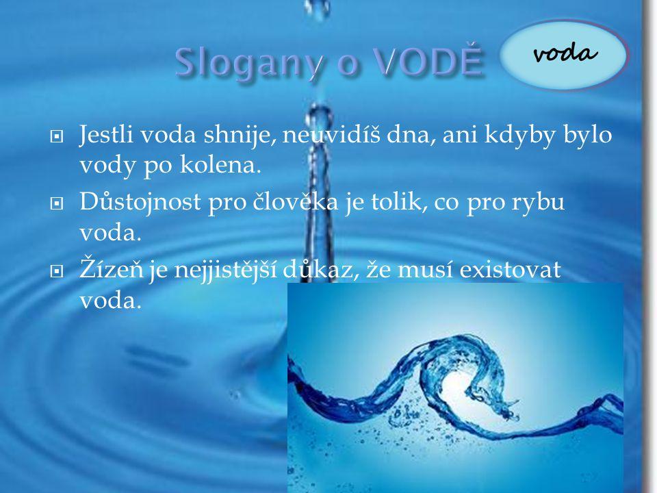 Slogany o VODĚ Jestli voda shnije, neuvidíš dna, ani kdyby bylo vody po kolena. Důstojnost pro člověka je tolik, co pro rybu voda.