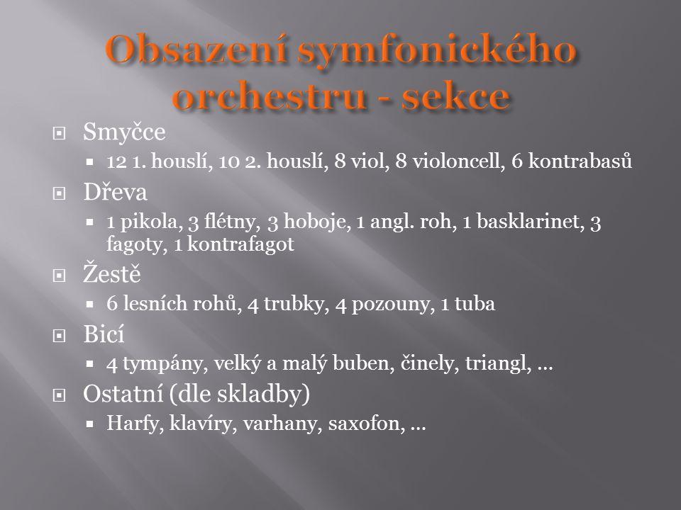 Obsazení symfonického orchestru - sekce
