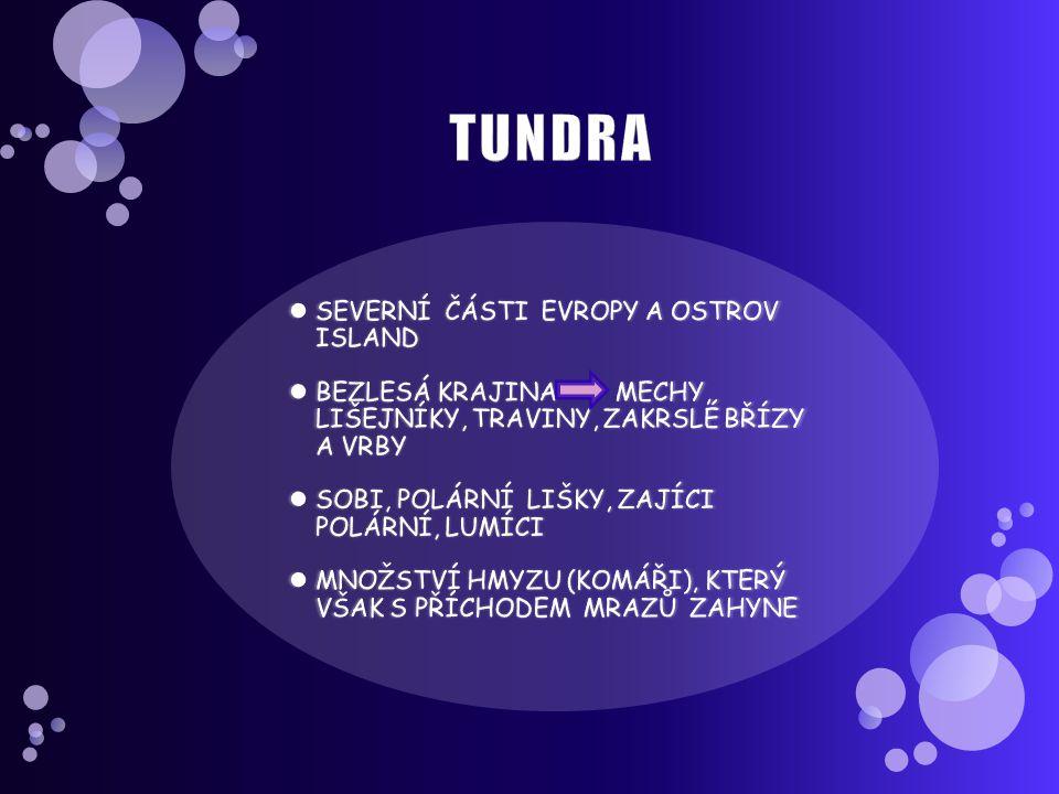 TUNDRA SEVERNÍ ČÁSTI EVROPY A OSTROV ISLAND