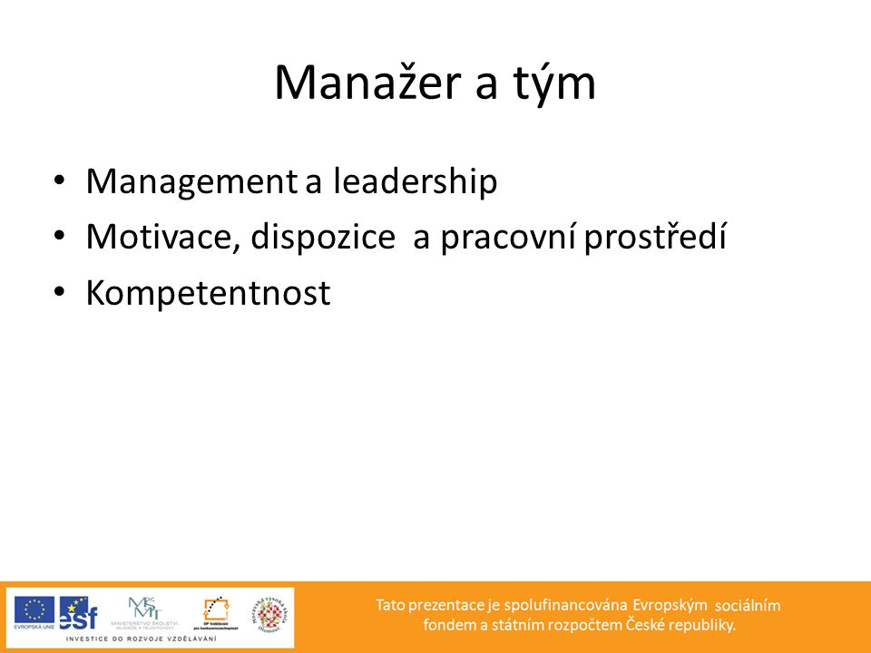 Manažer a tým Management a leadership