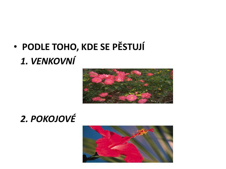 PODLE TOHO, KDE SE PĚSTUJÍ