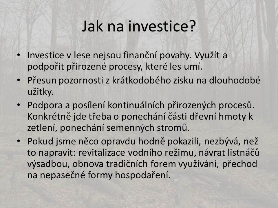 Jak na investice Investice v lese nejsou finanční povahy. Využít a podpořit přirozené procesy, které les umí.