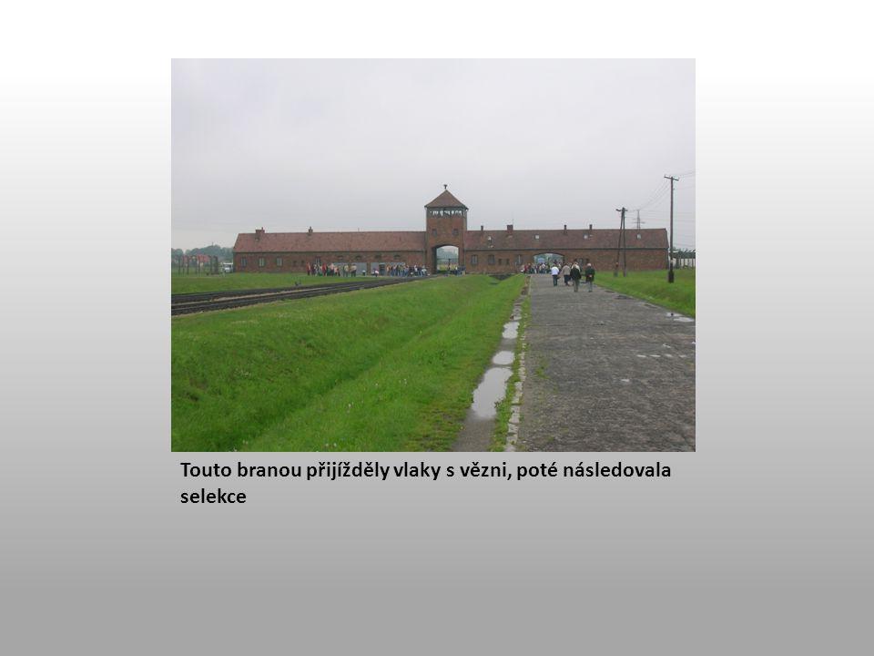 Touto branou přijížděly vlaky s vězni, poté následovala selekce