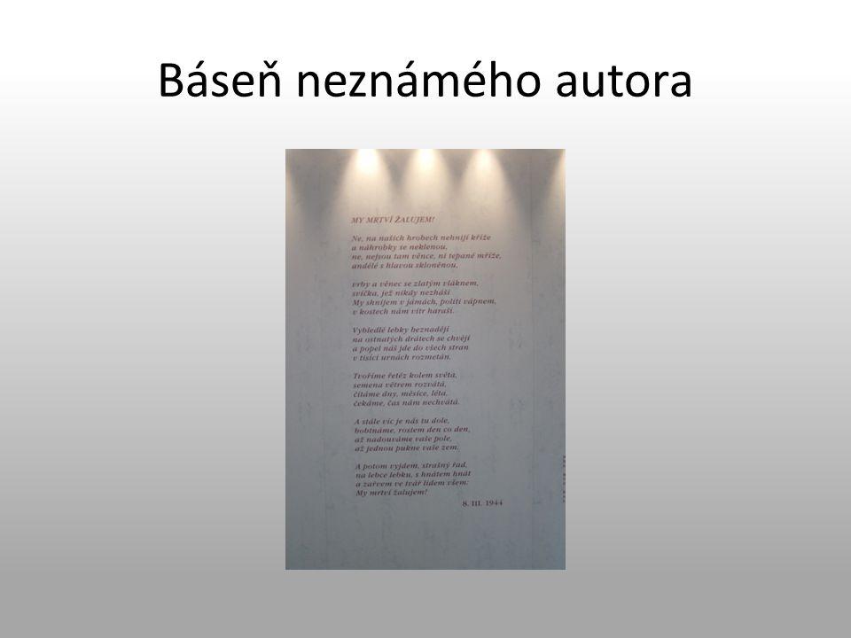 Báseň neznámého autora